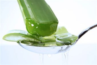 DIY Aloe vera Cucumber gel- Glowing skin & for hair growth