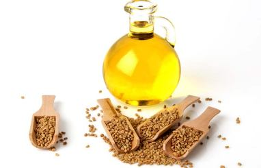 Advantages of Fenugreek Seed
